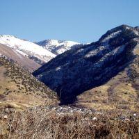 Dry Canyon, Логан