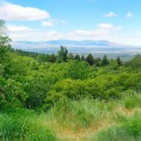 Salt Lake Valley from Neffs Canyon Trail, Маунт-Олимпус