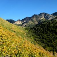Neffs/Millcreek Canyon Ridge, Wasatch Mountains, Utah., Маунт-Олимпус