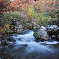 Mill Creek color., Маунт-Олимпус