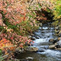 Millcreek in Fall, Маунт-Олимпус