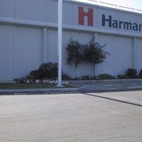 Harman Music Group, Мидвейл
