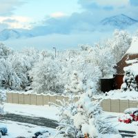 November in Salt Lake City, Мидвейл