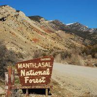 Manti-LaSal NF boundary sign at Manti Canyon, Моаб