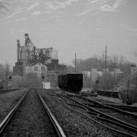 silver cup & tracks, Муррей