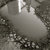 Little Puddle, Муррей