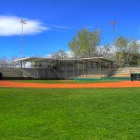 Center Field, Муррей