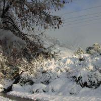 Provo Snow Storm, Прово