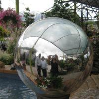 Reflaction in globe, Wasatch Shadows Nursery, Sandy, UT, Санди