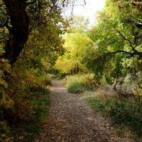 Glassman Pond Park Trail - Ogden, Utah, Саут-Огден