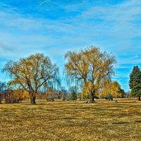 Altorest Memorial Park #2, Саут-Огден