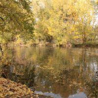 Duck Pond, Саут-Солт-Лейк