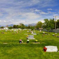 Flowers in the Cemetery, Тэйлорсвилл