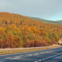 Aultum Colours, A9 Near Aviemore, Авимор