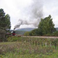 Aviemore Train, Авимор