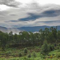 Parque Nacional Cairngorms, Авимор
