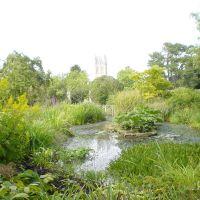 Botanic Garden, Оксфорд
