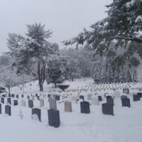 ALDERSHOT, MILITARY CEMETERY, FEB 09, Алдершот