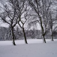 mw25 Locke Park, Barnsley in winter, Барнсли
