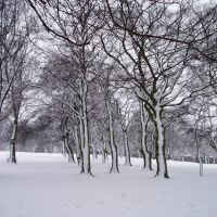 mw29 Locke Park in Winter, Барнсли
