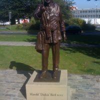 Dickie Bird Statue, Барнсли