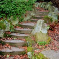 Locke Park Steps, Барнсли