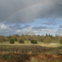 rainbow, Басингсток
