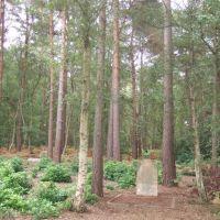 Brookwood/McDougald grave, Басингсток