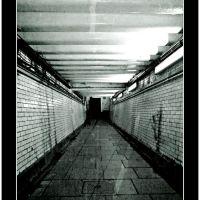 Underground Tunnel, Басингсток