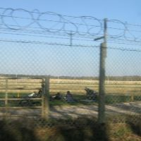 The Century Ranges, by seeing it behind the wireless fence, Басингсток