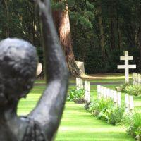 French War Graves Brookwood, Басингсток