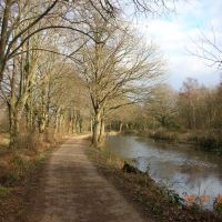 Basingstoke Canal near Brookwood, Басингсток