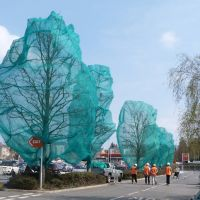 Trees for the chop - Sainsburys - Apl 13, Басингсток