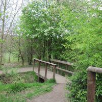 Blossom and footbridge, Oakwell Hall park, April 2011, Батли