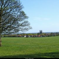 Beverley Minster from The Westwood Pasture, Beverely, East Yorkshire, Беверли