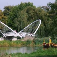 Bedford Butterfly Bridge, Бедворт