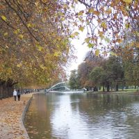River Ouse, Бедворт