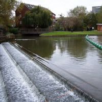 The Weir, Бедворт