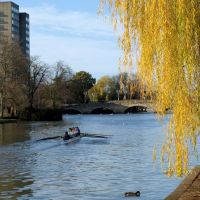 Rowing on the Ouse, Бедфорд