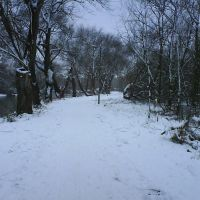 Snowy Path, Бедфорд