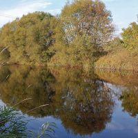 River Wear near Escomb, Бишоп-Окленд