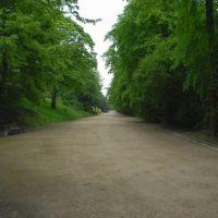 Broad Walk, Блэкберн