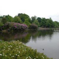 Lake 1, Блэкберн