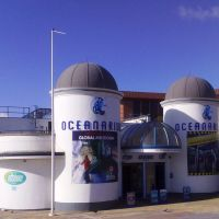 Oceanarium, Боримут