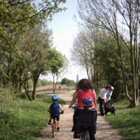 Cycling thro Bostons country park, Бостон