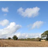 Wiltshire Panorama, Брадфорд