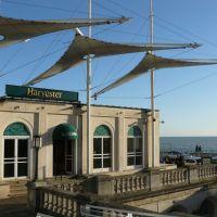 Sea Life Centre, Brighton, Брайтон