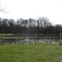 Pond on Shenfield Common, Брентвуд