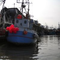 Fishing Boats at the Fish Dock, Bridlington, Бридлингтон