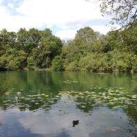 Creekmoor Pond 04_06_2009, Ватерлоо